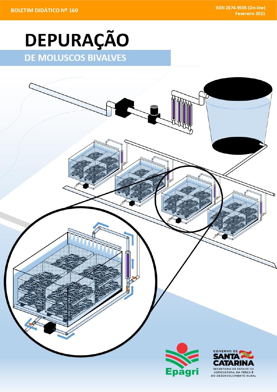 Visualizar n. 160 (2021): Depuração de moluscos bivalves